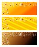 Spadku sztandar Ustawiający - liście w bąblach Zdjęcia Royalty Free