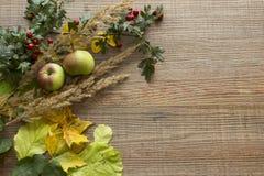 Spadku tło z jabłkami zdjęcie stock