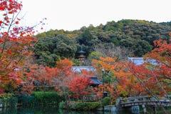 Spadku ulistnienie przy Eikando świątynią, Sakyo-ku, Kyoto, Japan Obraz Stock