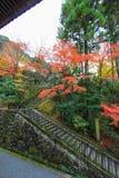 Spadku ulistnienie przy Eikando świątynią, Sakyo-ku, Kyoto, Japan (Zenrin-ji) Zdjęcie Stock