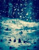 spadnie śnieg Błękitny tonowanie Zdjęcia Royalty Free