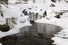 spadnie śnieg Zdjęcia Stock