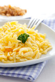 Spaetzle Royalty Free Stock Photos