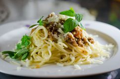 Spagetti bolognase on a white plate. Served with sauce, cheese and mint leaves Stock Photos