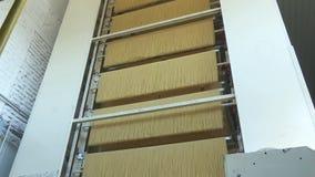 Spagetti som bearbetar i en pastafabrik lager videofilmer