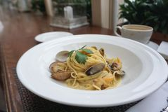 Spagetti white sauce with fresh clams. Close up shot of Spagetti white sauce with fresh clams Stock Photos