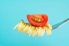 Spagettipasta med basilika och en kvist av grönska sårar på en gaffel med ett stycke av körsbärsröda tomater på blått Royaltyfri Foto