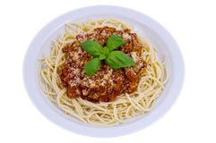 Spaghetti. Bolonese with herb on white plate stock image
