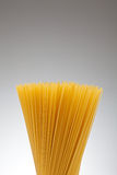 Spaghetti. Bunch of spaghetti on degrading background. Copyspace Royalty Free Stock Photo