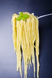 Spaghetti. Is probably the most popular noodles, started with children up to adults Royalty Free Stock Image