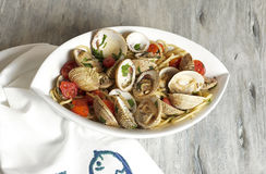 Spaghetti alle vongole. Food & Dishes for Restaurants, Cuisine of the peoples of the world, Healthy Recipes Stock Image