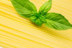 Spaghetti with basil leaf Stock Photography