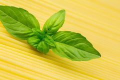 Spaghetti with basil leaf Royalty Free Stock Photo
