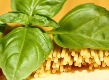 Spaghetti and basil Royalty Free Stock Photo