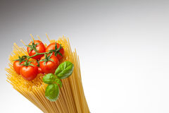 Spaghetti,Basil, Tomatoes. Close up of basic ingredients for italian pasta. Copyspace Royalty Free Stock Photography