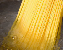 Spaghetti boiled Royalty Free Stock Photo
