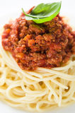 Spaghetti bolognese. With basil leaf close up Stock Images