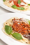 Spaghetti bolognese with cheese and basil Royalty Free Stock Image
