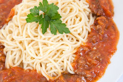 Spaghetti bolognese decorated with leaf on a white plate Stock Photos