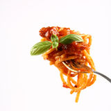 Spaghetti bolognese on a fork Stock Image