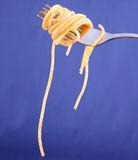 Spaghetti bolognese on a fork Stock Images