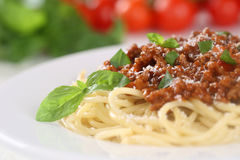 Spaghetti Bolognese noodles pasta meal with tomatoes Royalty Free Stock Images