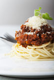 Spaghetti with bolognese Stock Photography