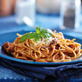 Spaghetti in bolognese sauce on blue plate Stock Images