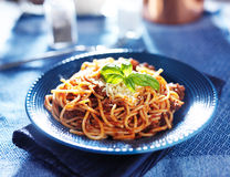 Spaghetti in bolognese sauce royalty free stock image