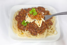 Spaghetti Bolonais   Photos libres de droits