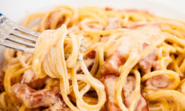 Spaghetti Carbonara made with eggs, bacon, cheese Royalty Free Stock Photography
