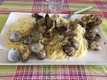 Spaghetti with clams. A plate of spaghetti with clams with oil and parsley on a table with colored tablecloth in Scottish style Stock Photography