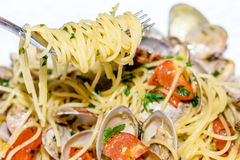 Spaghetti with clams and tomatoes Royalty Free Stock Photo