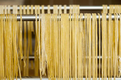 spaghetti faits maison Photo libre de droits