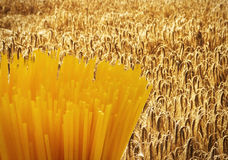 Spaghetti on Field Royalty Free Stock Image