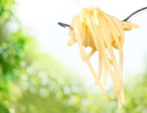 Spaghetti on Fork Stock Image