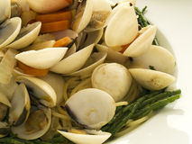 Spaghetti a le vongole Royalty Free Stock Photo