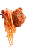 Spaghetti and Meatball on a fork Stock Photo