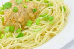 Spaghetti with Meatball and Spring Onions. Spaghetti with Chicken Meatball and Spring Onions on White Plate Isolated Close-Up Stock Photography