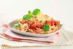 Spaghetti with minced meat and cheese Royalty Free Stock Photos
