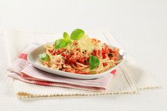 Spaghetti with minced meat and grated cheese Royalty Free Stock Photos