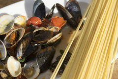 Spaghetti with mussels and clams Royalty Free Stock Photo