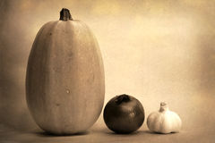 Spaghetti Noodle Squash Onion and Garlic old style photograph Stock Photo