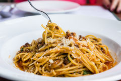 Spaghetti noodles. With meat sauce on white plate Royalty Free Stock Image