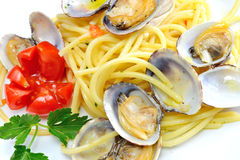 Spaghetti pasta and seafood  clams Stock Images