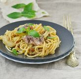 Spaghetti with sardine sauce Stock Image