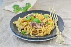 Spaghetti with sardine sauce Stock Images
