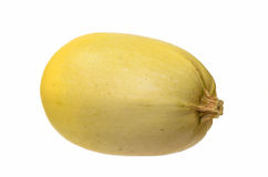 Spaghetti Squash. Yellow Spaghetti Squash Isolated on White Royalty Free Stock Photo