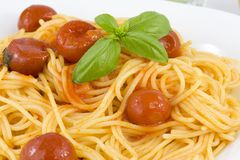 Spaghetti with tomato and basil. Traditional Italian dish, spaghetti with Italian Royalty Free Stock Image
