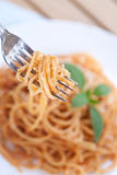 Spaghetti in tomato sauce Royalty Free Stock Photography